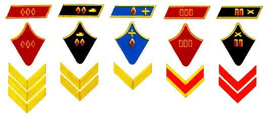 Комкор (пехота). Комдив (автобронетанковые войска). Комбриг (ВВС). Полковник (пехота). Майор (артиллерия).